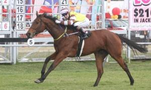 Gentle Brook winning at Borrowdale Park with Apprentice Mathew Thackeray up.