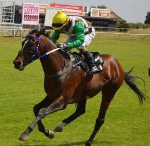 Young Diplomat will be ridden by Apprentice Serino Moodley.