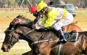 Bankers Blues Fortune Nugget Effect Takawira R5