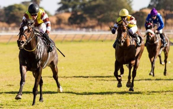 Champion Juvenile Stakes (Gr 3)