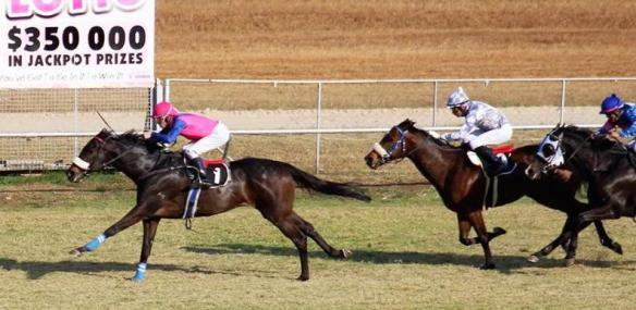 Flax, Newton Power, Eurakilon Breeders Sprint on July 31