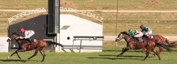 FINISH bLOODSTOCK 2000 sOLINSKI (mURRAY) fLASHR (bROWN) hAGA hAGA (MUNGER)