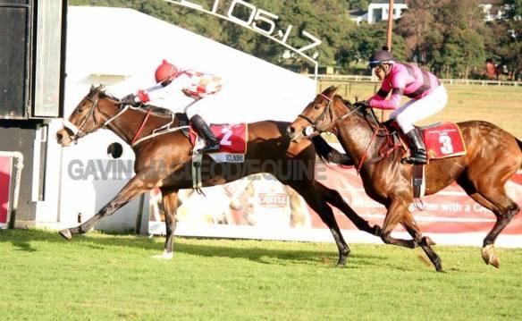 Oaks finish Solinski (Zechner) Crystalline.(Chambers) Gavin