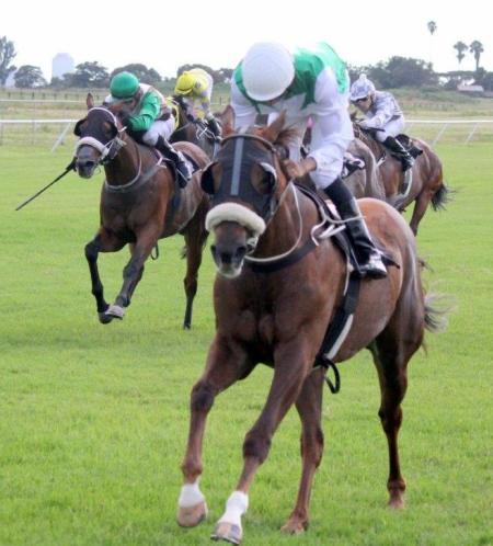 Life is Good Simons and Road To Dubai Brown Hachiman Sprint Gavin 2