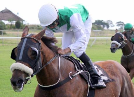 LIFE IS Good Simons ROAD to Dubai Brown Hachiman Sprint Gavin M