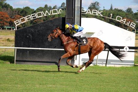 Knuckleball Zimbabwe 2000 Munger Gavin