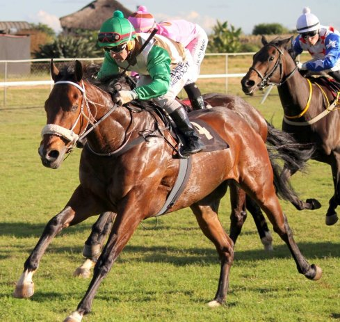 Borrowdale horse racing tips